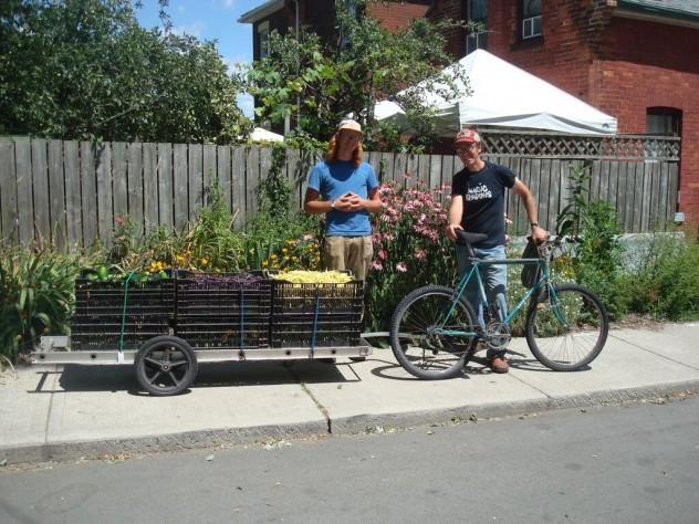 backyard-harvest-wholesale-hamilton-local-food