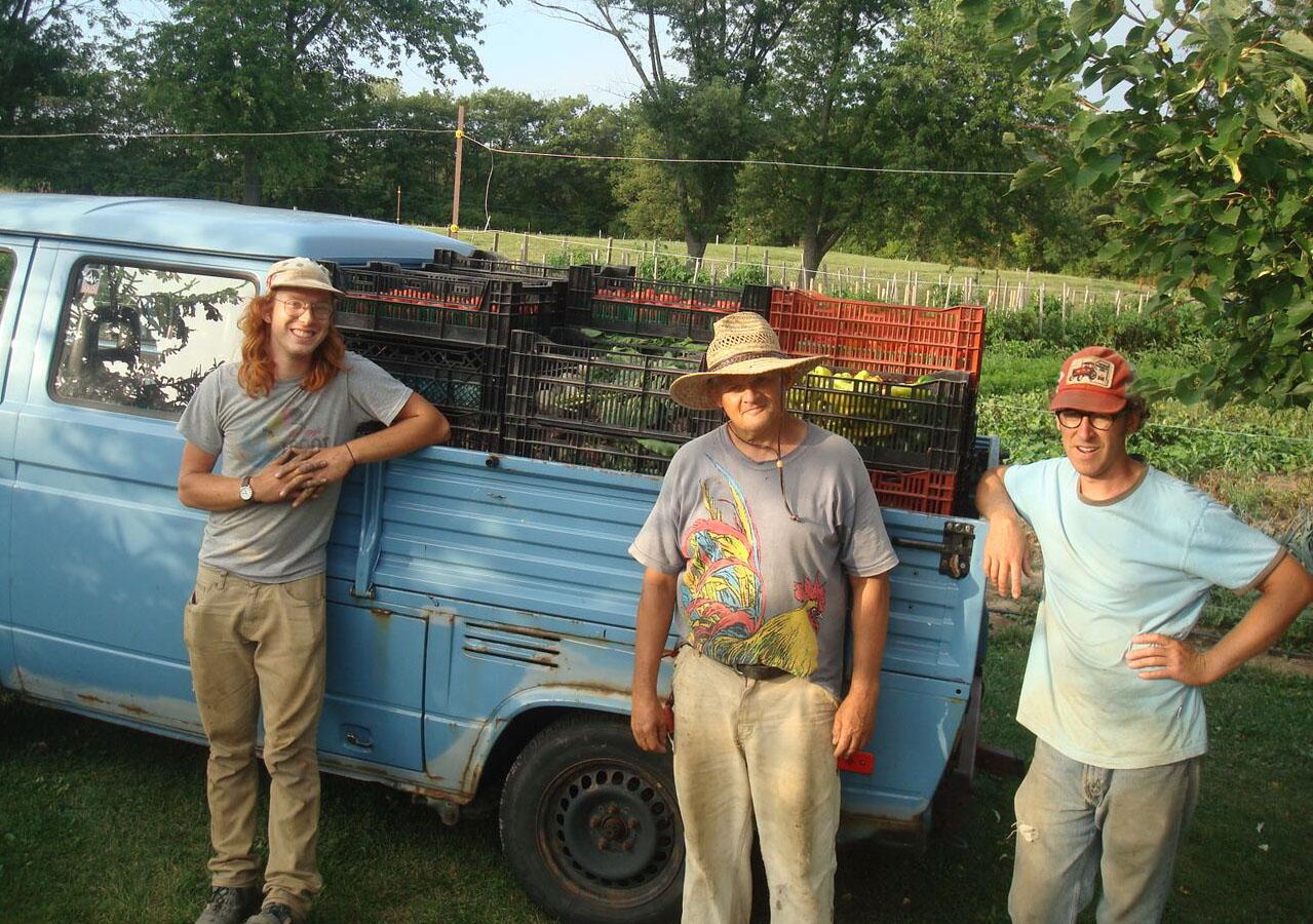 backyard-harvest-local-produce-hamilton